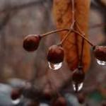 vladimir-russ_proklyatie (134)